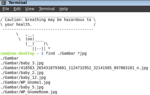 Find - Cari file di folder Gambar  denngan extensi JPG